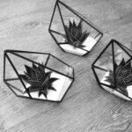 Black Terrarium Table Centres
